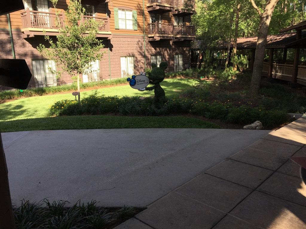 Mickey topiary.jpg